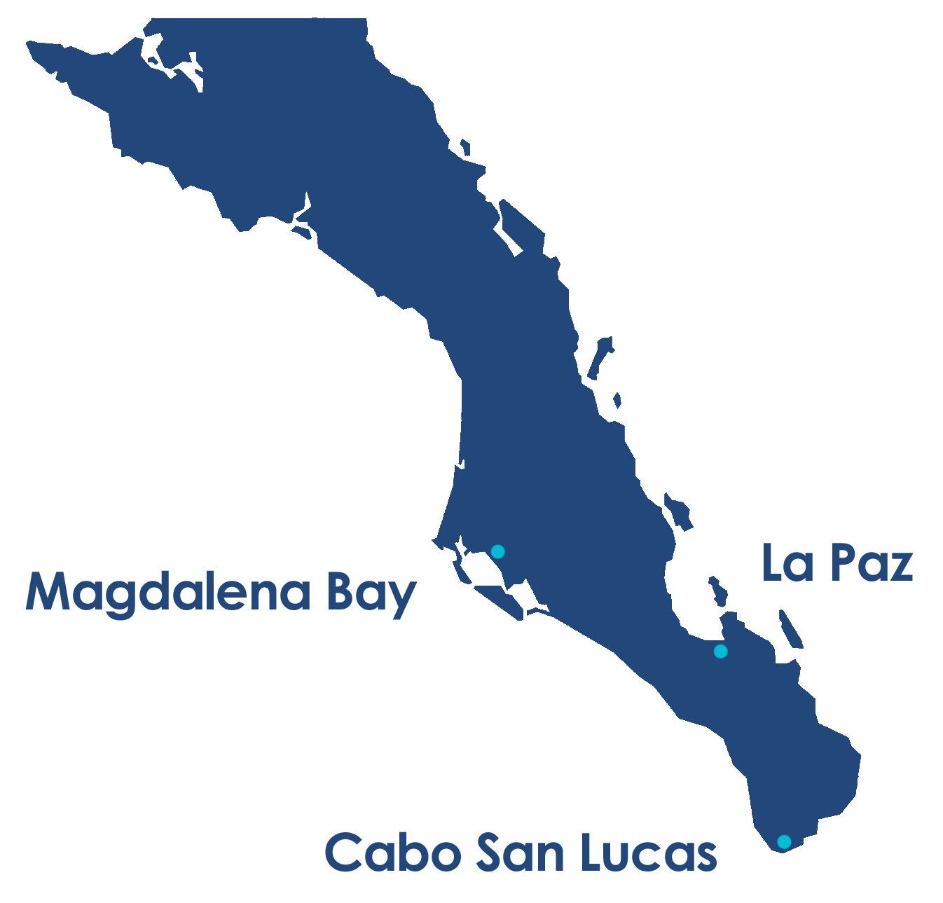 Whale Watch Cabo Map