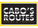 Whale Watch Cabo Transportation Provider