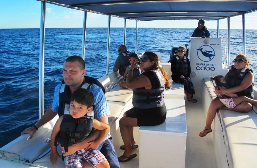 Private Tour Whale Watching Cabo San Lucas